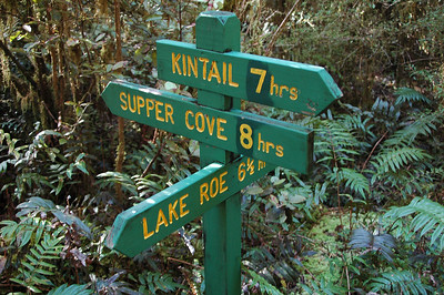 Eight hours down, four more days to go. We just came from Supper Cove. Our original plan was to press straight on to Kintail Hut, but we ended up taking a day trip up to Lake Roe instead. More later.