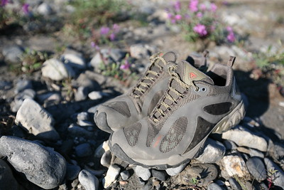 At the time of writing, I have used these shoes in the Brooks Range of the Alaskan Arctic, the White Mountains of New Hampshire, The Mahoosuc Mountains of Maine and to climb 14,000 foot mountains in Colorado. In short, they're great and the NestFit foodbed is amazing. Traction is superb. Check out more about these shoes at offyonder.com.