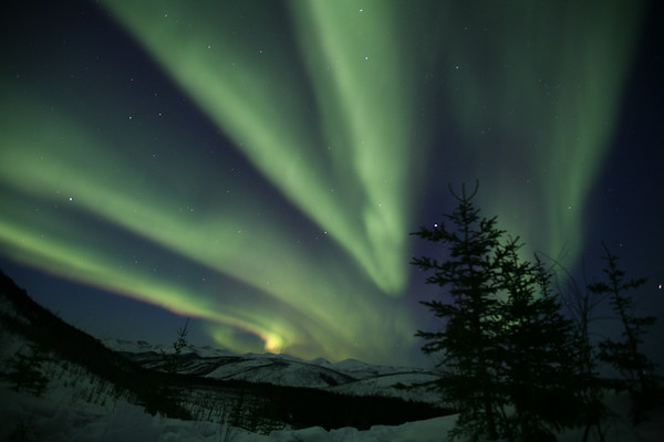 WHITE MOUNTAINS, AK - The Aurora Borealis (northen lights) put on an incredible show at Caribou Bluff Cabin around midnight.